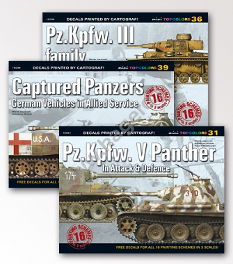 Captured Panzers German Vehicles in Allied Service Pz.Kpfw. III family  31 - Pz.Kpfw. V Panther In Attack & Defence