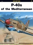 01 - P-40 of the Mediterranean